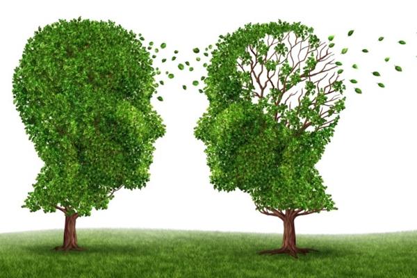 Concientización sobre el Alzheimer