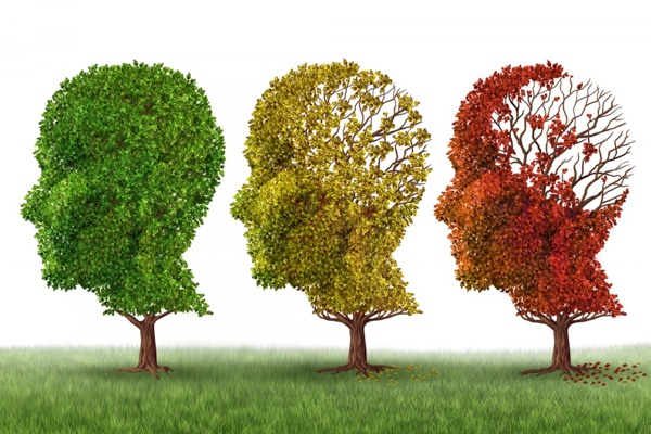 about Alzheimer's Disease